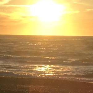 solnedgang ved gammel skagen